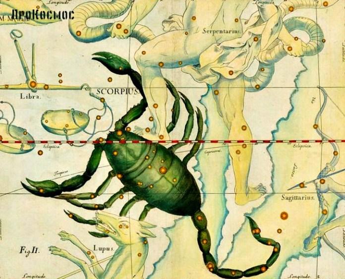 Скорпион Scorpius