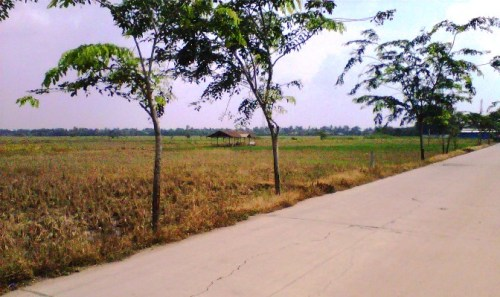 Jalur Alternatif Bekasi - Cikarang via Tambelang