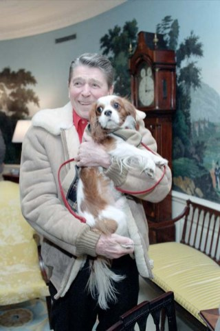 """President Reagan holding """"Rex"""" in the Diplomatic Reception Room. 3/7/1986. (Ronald Reagan Library, National Archives)"""