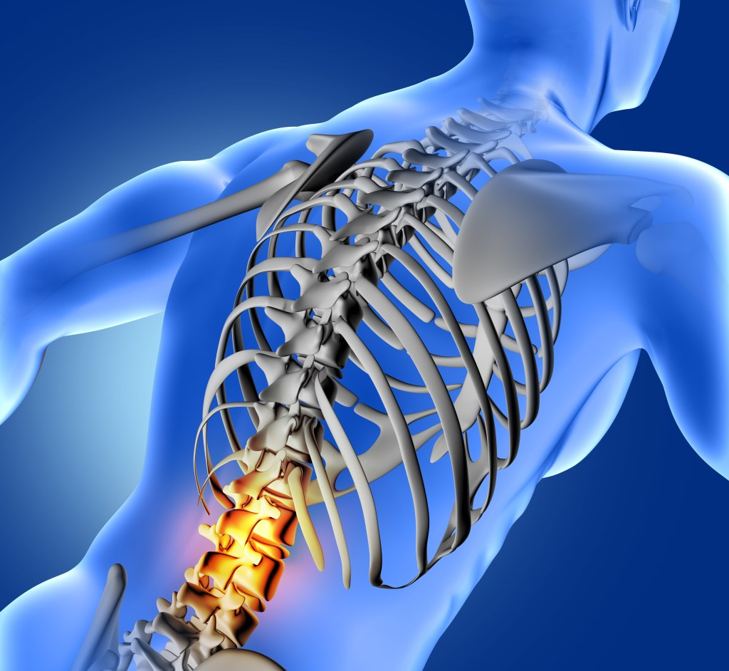 3D render of a blue medical image of male figure with lower spine highlighted