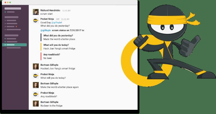 probot ninja