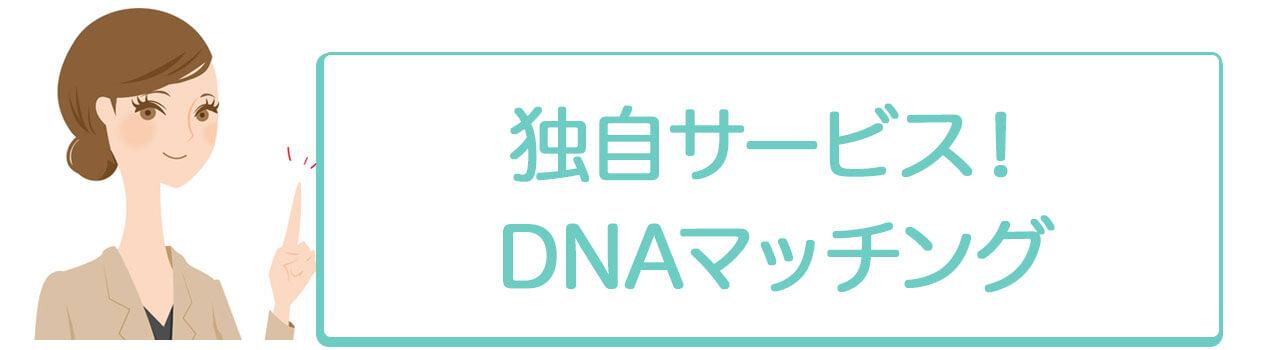 DNAマッチング