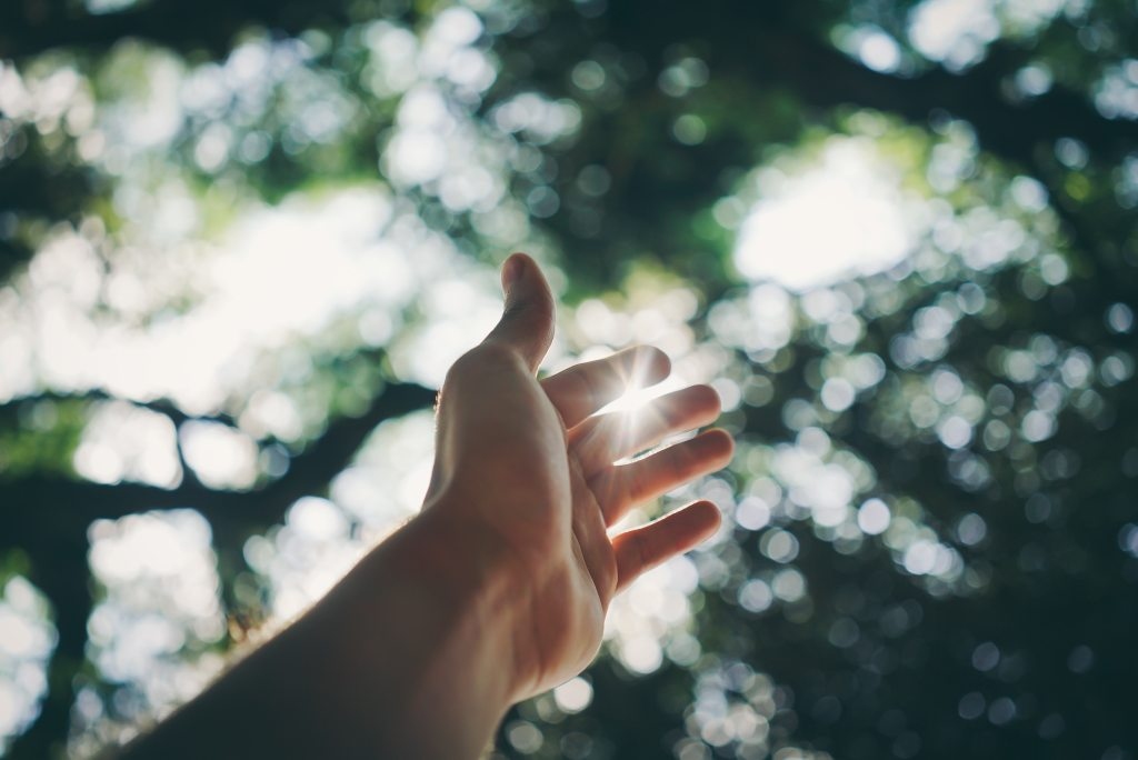 selective-focus-photography-of-hand-1654698