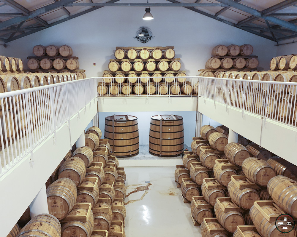 Cave de rhum de la distillerie Bologne en Guadeloupe