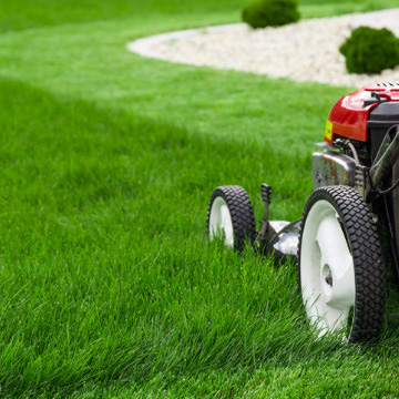 end of summer lawn care