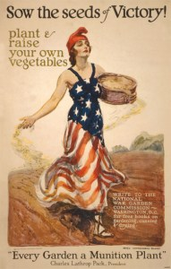 victory-garden-sow-the-seeds