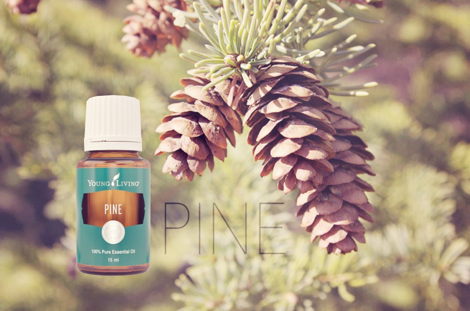 PINE essential oil Young Living