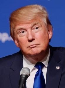Das Vermögen von Donald Trump