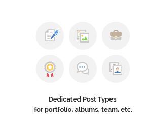 Dedicated Post Types for portfolio, albums, team, etc.