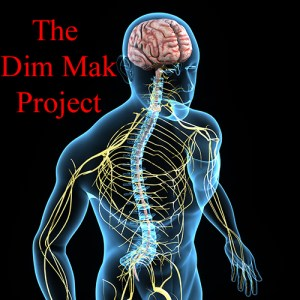 The Dim Mak Project Video