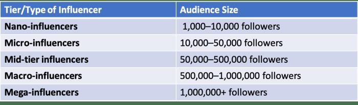 Influencer Marketing Types