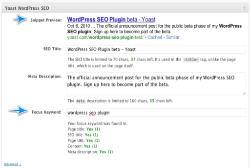 WordPress SEO Post Screenshot