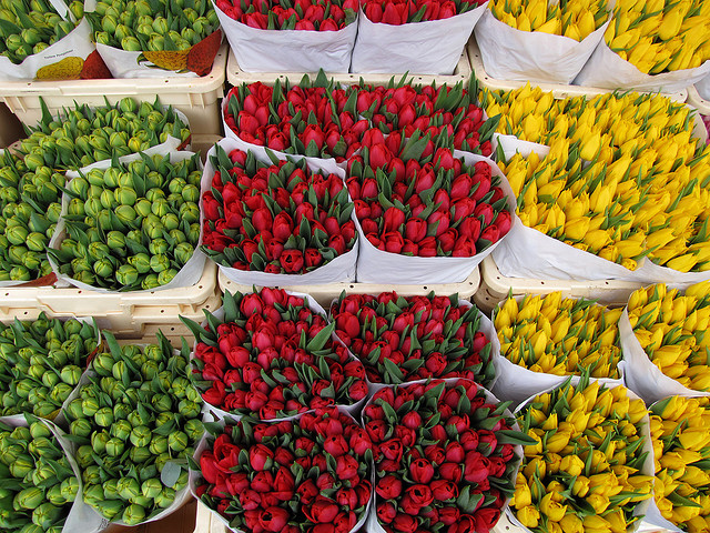 https://i2.wp.com/promptguides.com/amsterdam/_photos/bloemenmarkt/bloemenmarkt_002.jpg