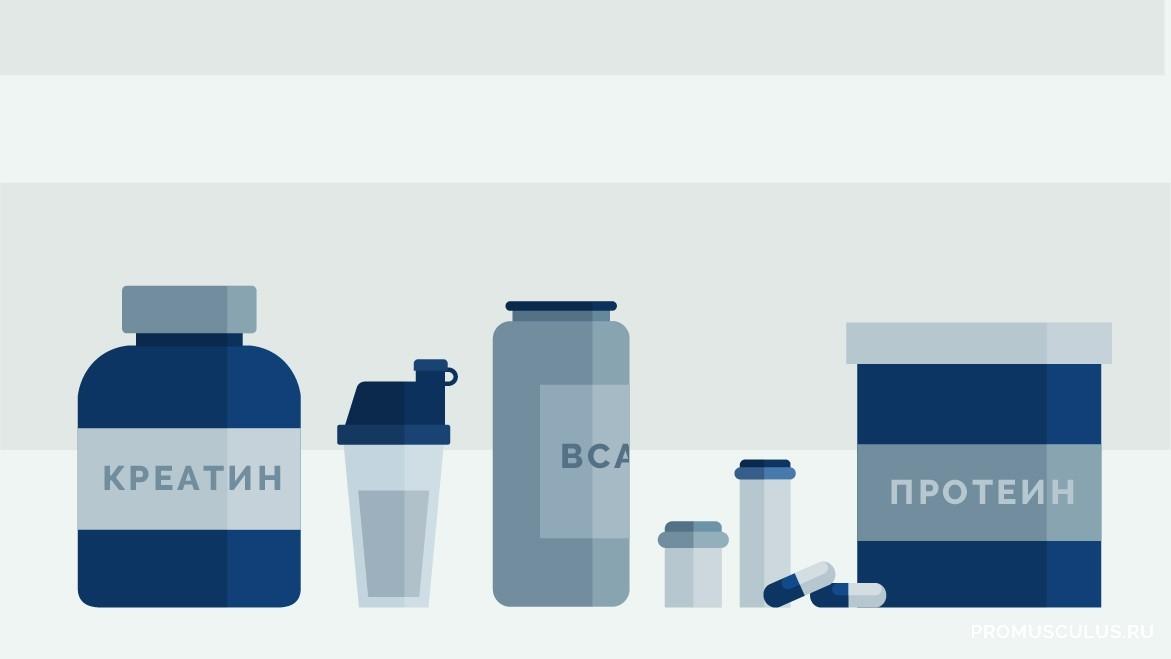 Виды протеина в спортивном питании какие бывают и чем отличаются