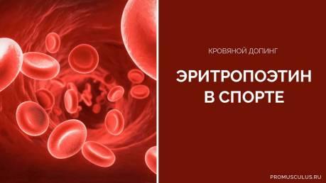Кровяной допинг Эритропоэтин в спорте: механизм действия и побочные эффекты