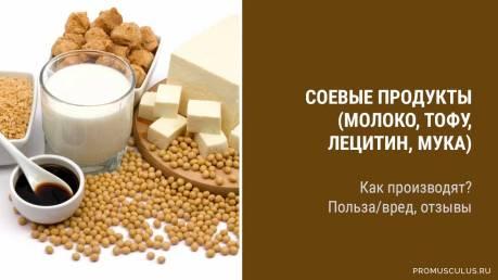 Обзор продуктов из сои (соевое молоко, сыр, мука, лецитин): польза и вред для здоровья, отзывы потребителей