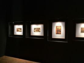 Exposition Fukami