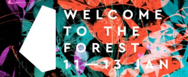 Welcome to The Forrest