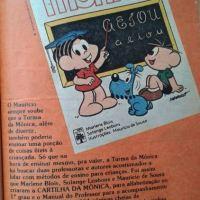 Cartilha da Mônica (1980)