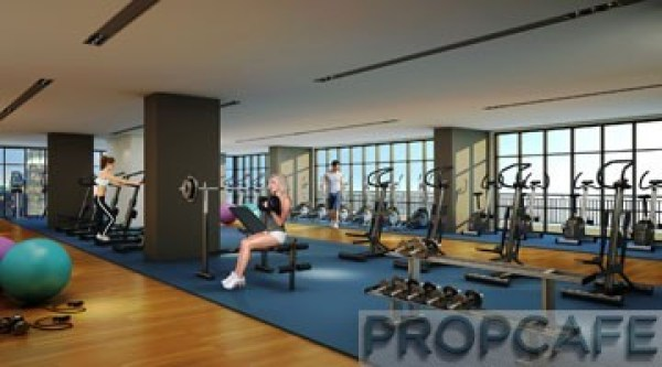 Avenue_D'vouge_gym