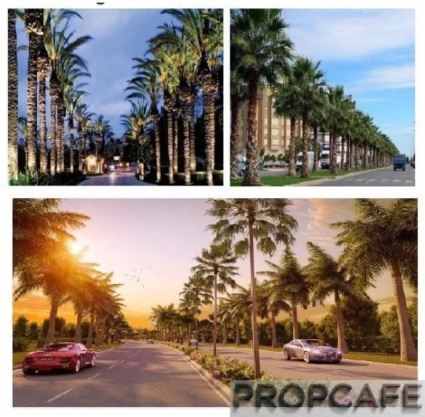 Bandar_puteri_warisan_street_of_palms