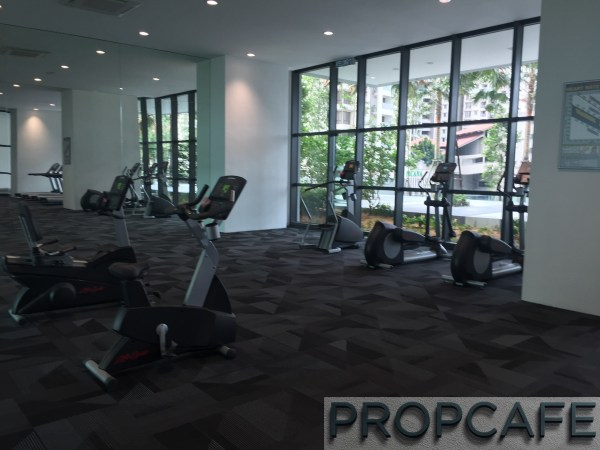 Tropicana_avenue_gym5