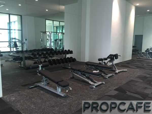 Tropicana_avenue_gym7