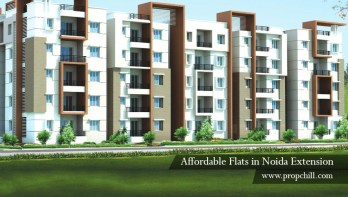 affordable flats in noida extension1
