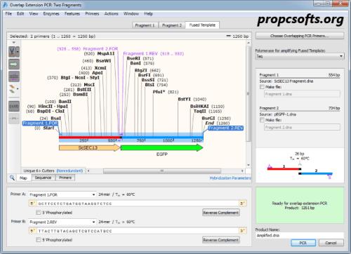 SnapGene Keygen 2022 Download