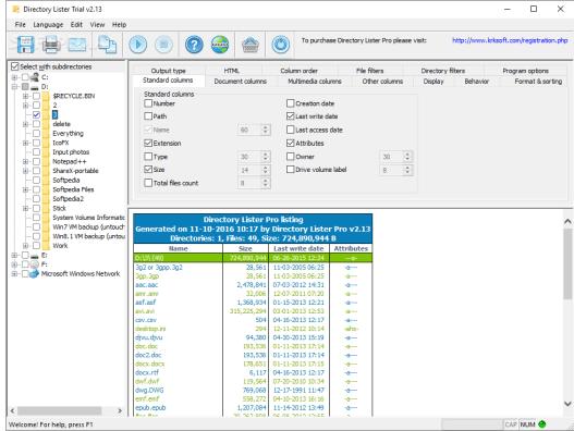 Directory Lister Enterprise 2.39 Pro Screenshot 2