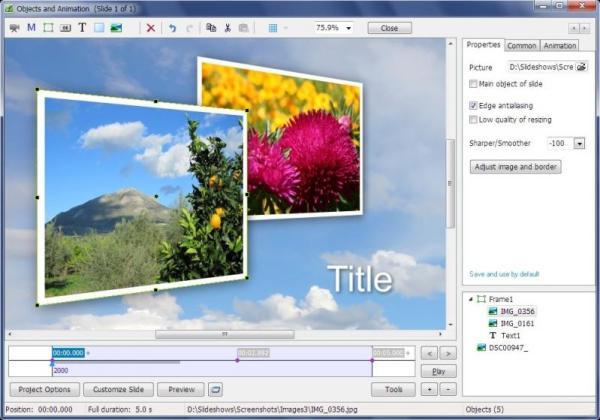 PicturesToExe Deluxe 9.0.22 Patch Screenshot 2