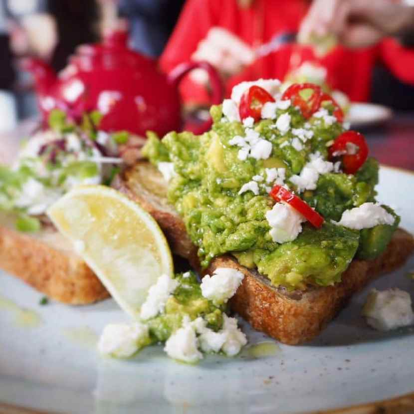 Brunch at Ezra and Gill smashed avocado