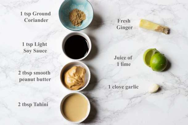 satay ingredients listed