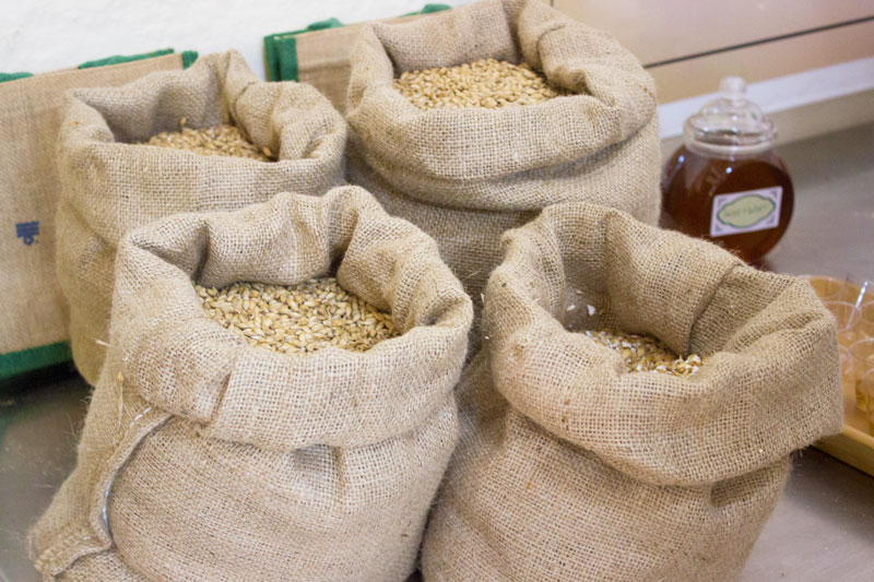 Sarsons barley