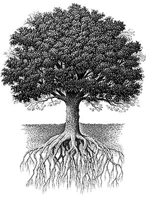oak_tree_combo-1