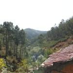 PD0105 – Quinta da Barroca