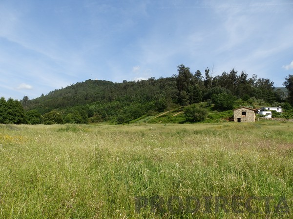 central portugal property