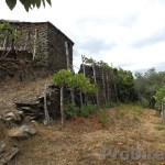 Quinta in idyllic location with two houses in stone