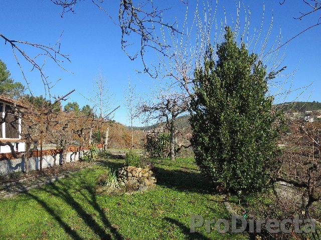 portugal quinta for sale