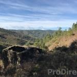 Quinta Cova do Ladrão -  PD0237