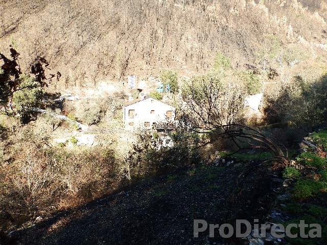 Farm in Arganil for sale