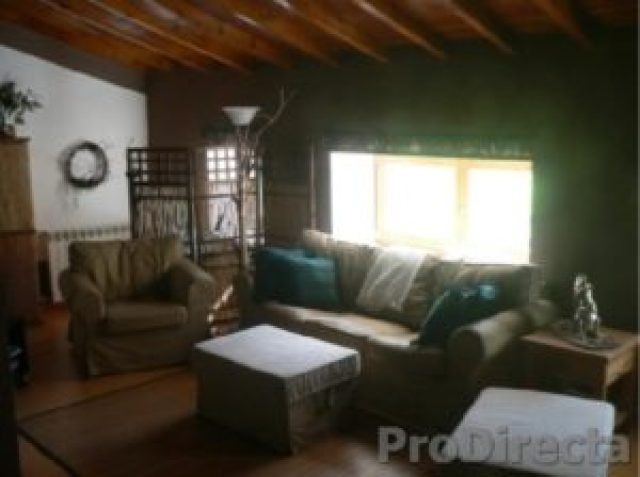 Living Room – Cathedral Wood Beam Ceiling
