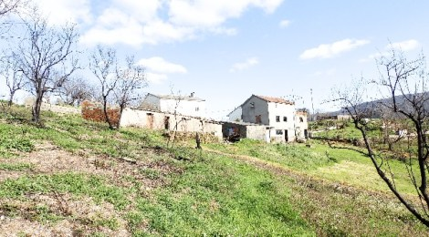 Renovated house with land and anexes - PD0277 at 3330, Portugal for 77000