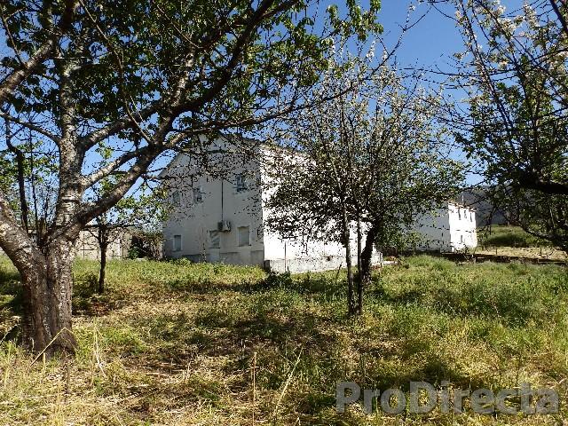 Villa Góis central Portugal sale