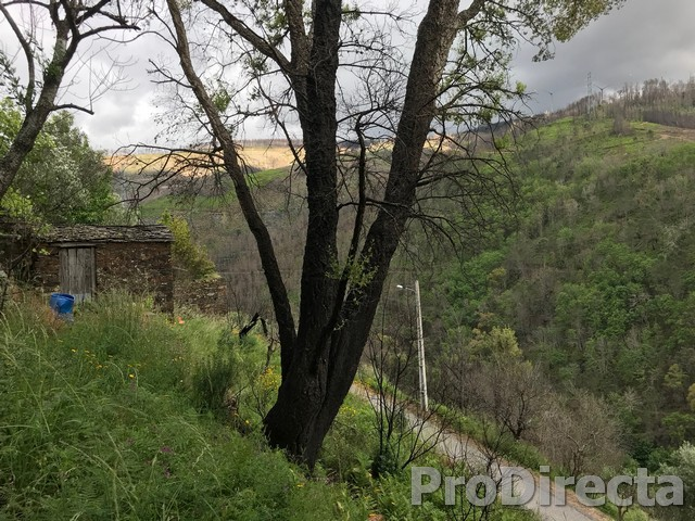 Schist cheap fast sale tree river views
