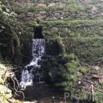 Vale da Galinha - PD0332