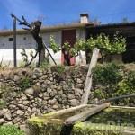 Quinta da Castanheira  - PD0343
