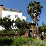Casa Palmeira - PD0337