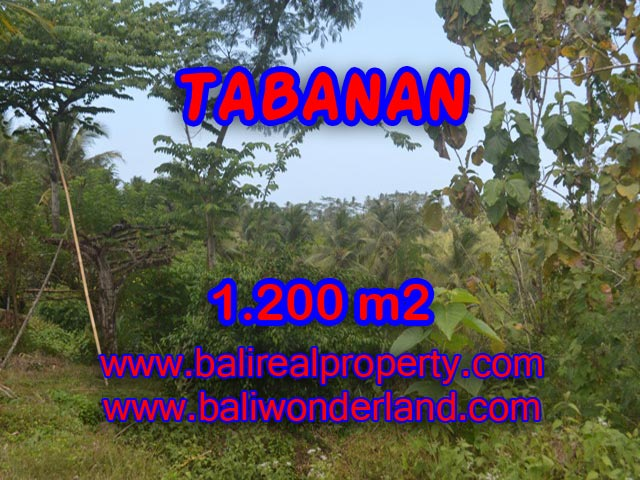 Stunning Land for sale in Bali, river view in Tabanan Bali - TJTB072