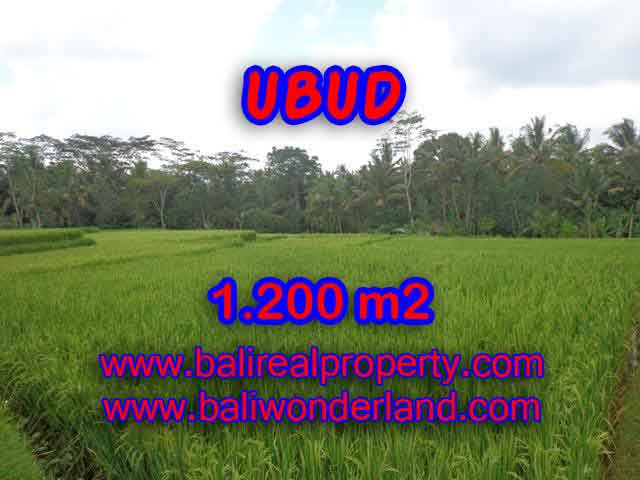 Magnificent Property for sale in Bali, land for sale in Ubud Bali – TJUB400